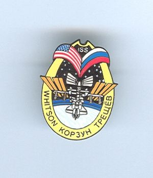 Expedition 5 ISS International Space Station Mission Lapel Pin Official NASA